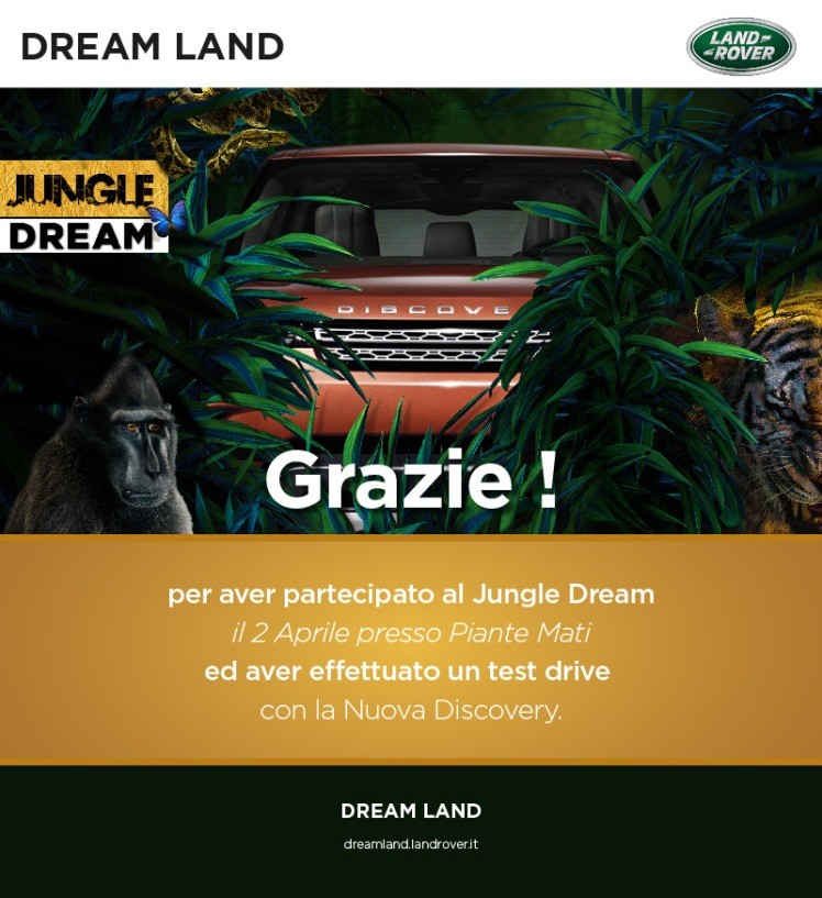 jungle dream